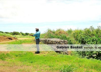 Gabian Basket at Estridge